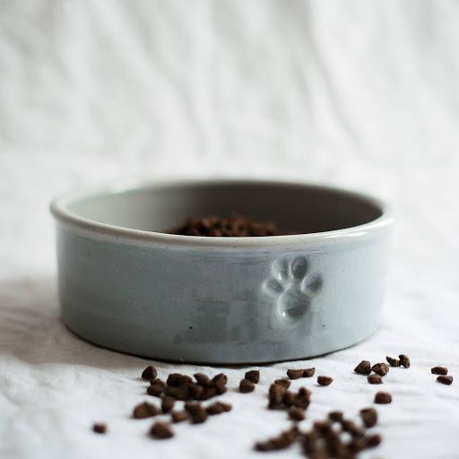 Handmade dog bowl